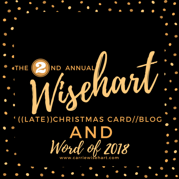 Christmas card carrie wisehart 2018 my year of learning and our very late christmas card m4hsunfo